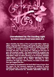 Overwhelmed By The Dazzling Light